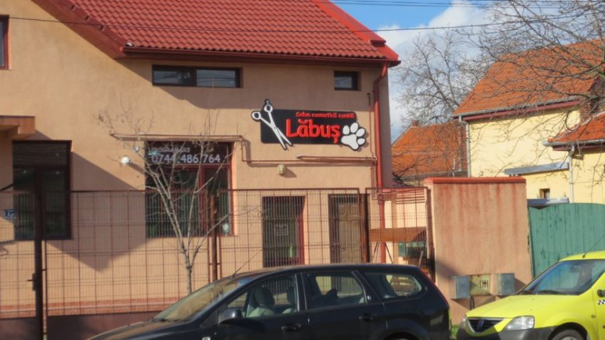 Salon Labus Timisoara Info3dro